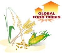 Crop Shortage Looms