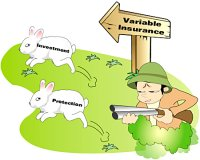 Variable Insurance Product Targets 2 Rabbits