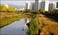 Cities Seeking Urban Wetland Restoration