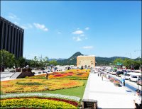 [HS] Gwanghwamun Plaza's pink flower bed in central Seoul ...