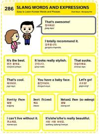 (286) SLANG WORDS AND EXPRESSONS