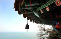 Wooden fish gongs and wind chimes: Symbols of Buddhist cultivation