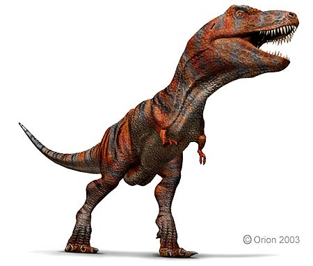 Early T Rex Ancestor Found In S America