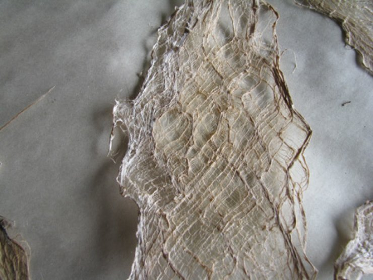 Sun bleached mulberry bark lace / Courtesy of Aimee Lee