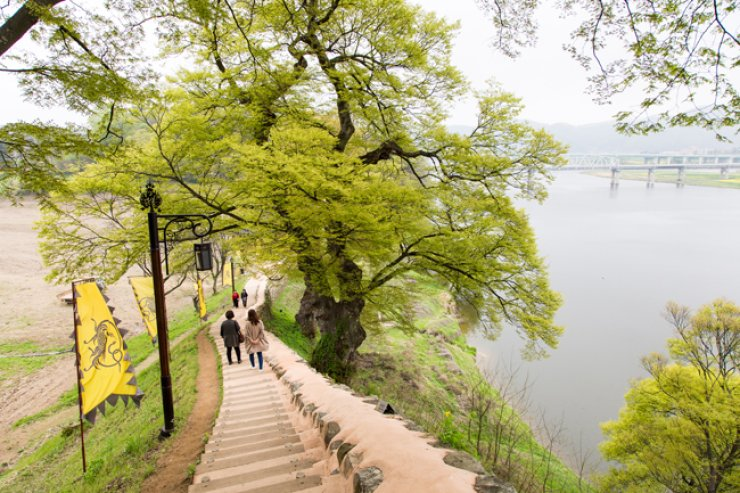 Gongsan Fortress in Gongju, South Chungcheong Province, built during the Baekje Kingdom (18 B.C.-A.D. 660), offers a good walking course.  / Courtesy of KTO