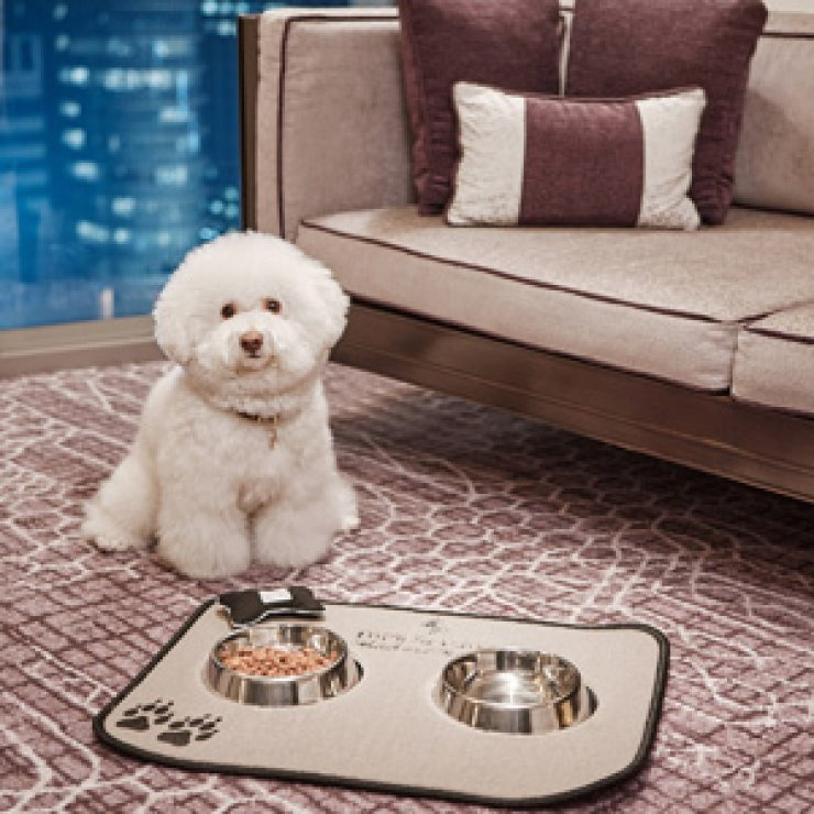At Four Seasons Hotel Seoul in downtown Seoul, guests' pets can have a space in the room for an extra 250,000 won. /Courtesy of Four Seasons Hotel Seoul