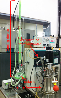 Lee Sang-yupA fermentation system developed at KAIST is used to produce short-chain alkane for gasoline from genetically engineered microorganisms./ Courtesy of KAIST