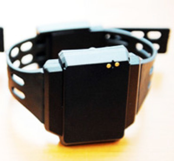 An electronic anklet