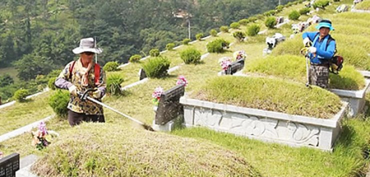 Family members tidy up the graves of their ancestors with weed-trimmers in Hamyang, South Gyeongsang Province. / Yonhap
