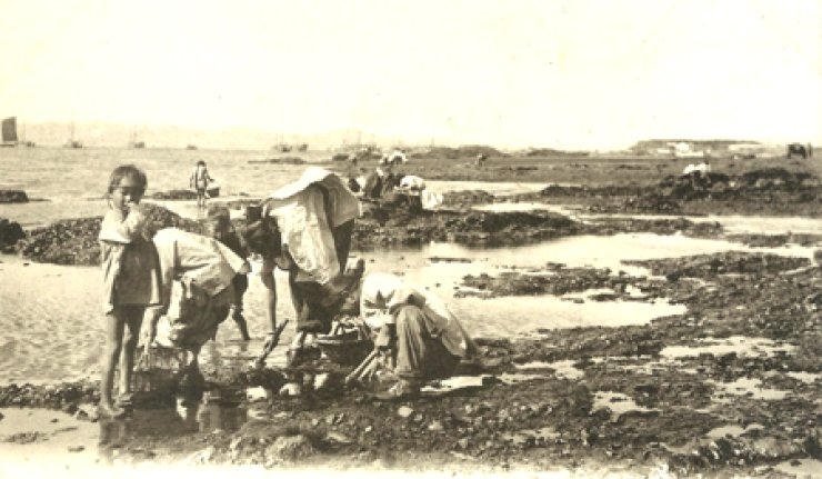 Korean women gather sea goods in a coastal area in the early 20th century. / Courtesy of the Robert Neff Collection