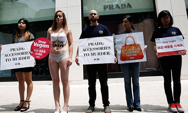 27e0c9f2d57c05 Members of animal welfare groups CARE and PETAasis hold a rally to protest  sales of ostrich leather handbags by luxury brand Prada in front of a Prada  store ...