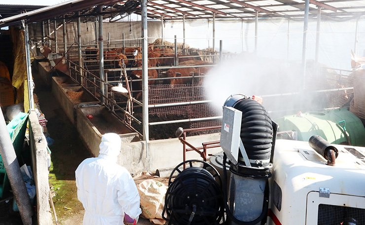 Local authorities in Gwangju spray disinfectants at a cattle farm in Boeun, North Chungcheong Province, Monday, after a case of foot-and-mouth disease was confirmed there earlier that day. / Yonhap