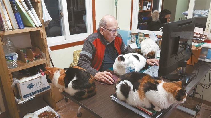 Frederic H Dustin is hard at work surrounded by cats in this 2015 photo. / Courtesy of Robert Neff