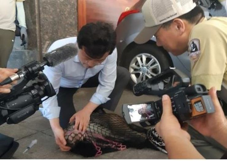 A monkey, which roamed Mount Bukhan for more than two months, was caught near Seoul's Yeonsinnae Station on Aug. 22. Courtesy of Ministry of Environment