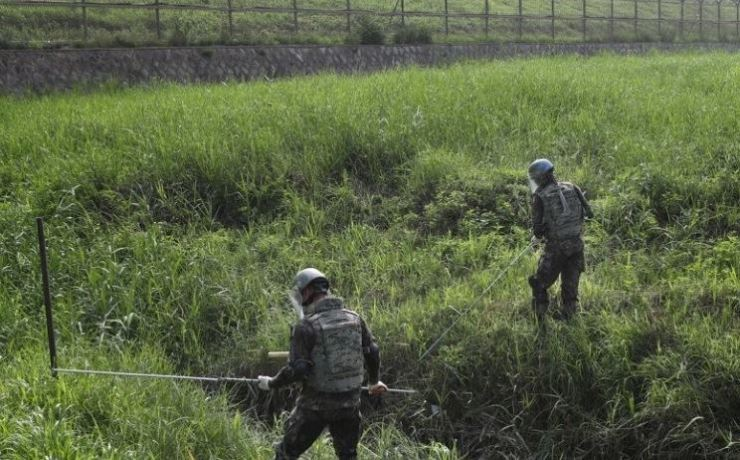 Soldiers search for land mines in a grassy area in the South Korean border city of Paju, Gyeonggi Province. / Yonhap