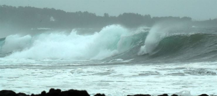 Wild waves reach the shore of Jeju Island, Friday. Yonhap