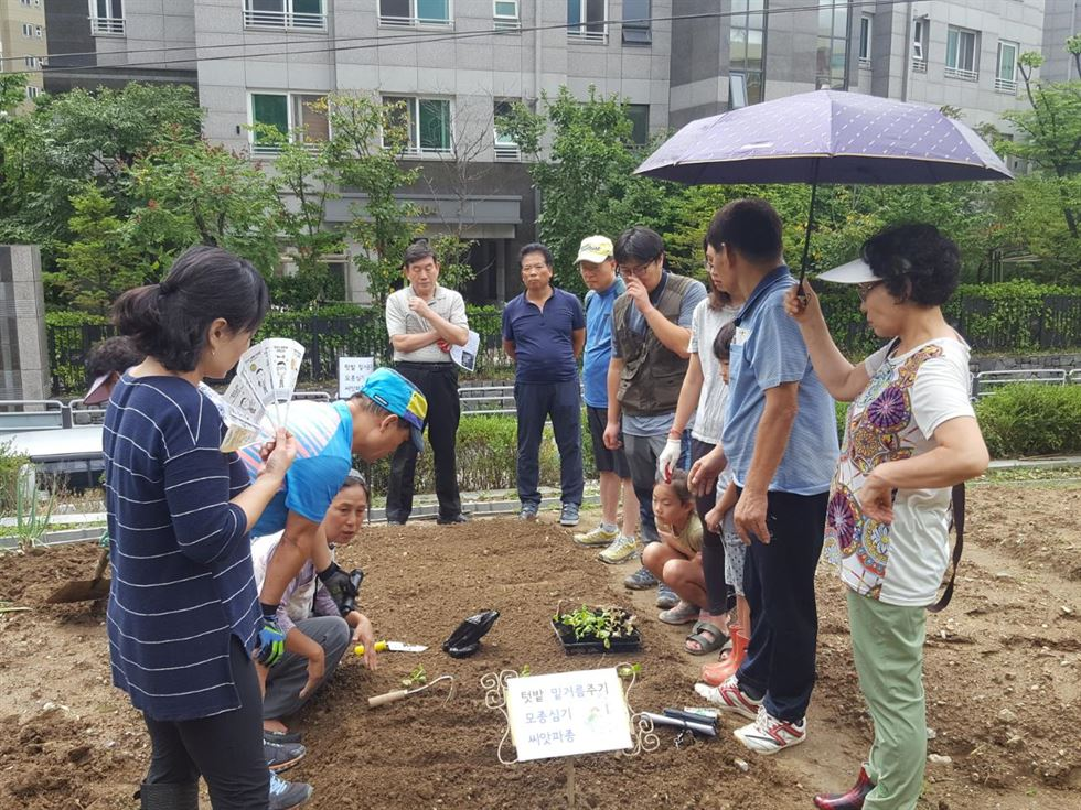 Residents at Nowon Energy Zero housing complex in Nowon-gu, northeastern Seoul, tend small box gardens earlier this year. / Courtesy of Nowon-gu Office