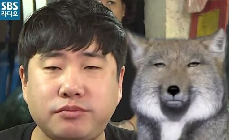 News presenter Bae Sung-jae is being compared to a desert fox during his radio show 'Bae Sung-jae's Ten.' The producers of 'Visual Radio' edit a program in a humorous way and upload the edited version on social media as a means to attract people. Capture from SBS radio 'Bae Sung-jae's Ten.'