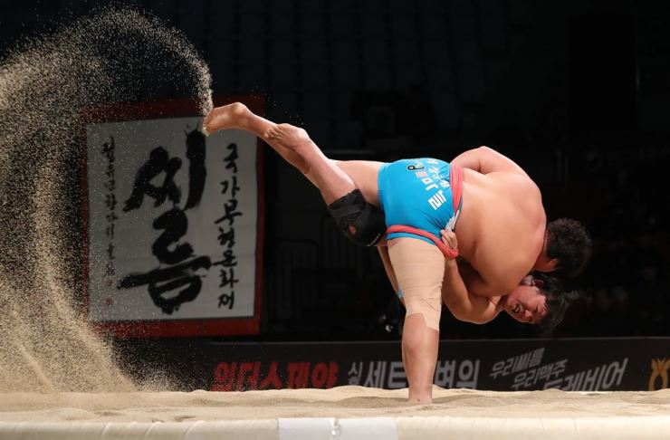 Two Korean traditional wrestlers compete during 2018 Korea Open Ssireum Festival in Andong, North Gyeongsang Province, in November last year. Korea Times file