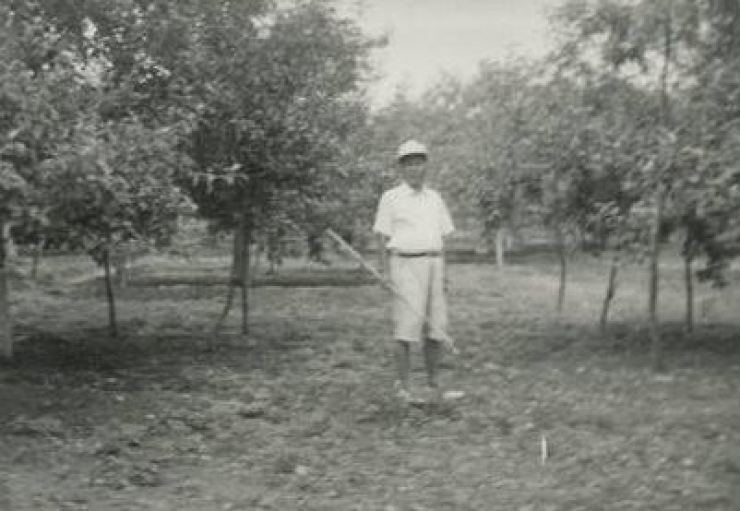 Professor Park Young-shin's father Park Jung-heun poses at his apple farm in North Gyeongsang Province in this undated photo. He died of complications from a stroke in 2010. He was 97. / Photo from Park Young-shin