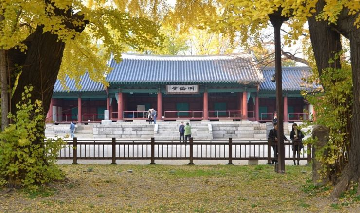 Sungkyunkwan's lecture hall Myeongnyundang is seen through the leaves of ginkgo trees, one of which is 500 years old. / Korea Times photo by Jon Dunbar