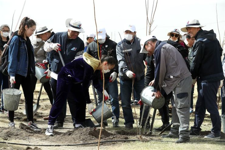 Employees of Korean Air and Delta Air Lines plant trees in the Baganuur district of Mongolia, Tuesday. Korean Air has been planting trees there since 2004 in an effort to tackle desertification, and this year Delta staffers took part in the campaign to mark the one-year anniversary of the two airlines' joint venture. / Yonhap