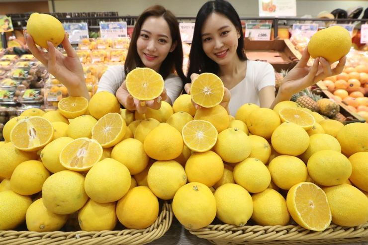 Models promote golden tangerines produced in Jeju Island at the Lotte Mart branch in Seoul Station, Tuesday. The discount store chain said it is selling the especially juicy and sweet tangerines at its stores nationwide until Aug. 21. / Yonhap