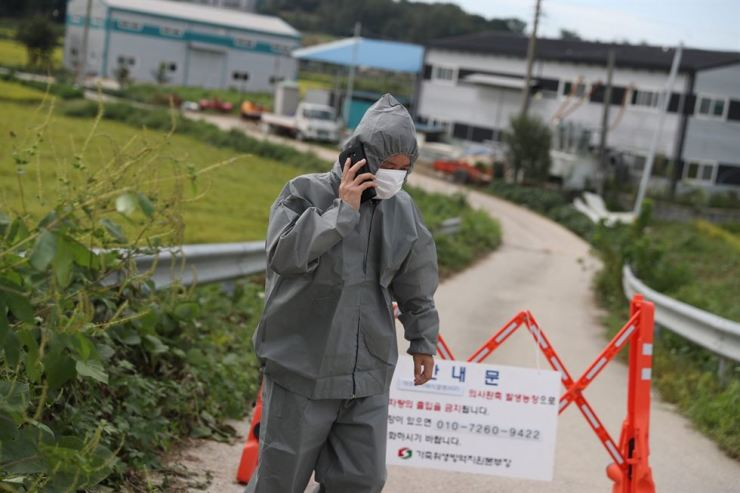 A government official speaks on a phone near a pig farm at Paju in Gyeonggi Province, Tuesday, after the government had confirmed Korea's first case of African swine fever. The government plans to cull about 4,000 pigs in the region by Tuesday, strengthening efforts to disinfect farms and transport vehicles. Korea Times photo by Choi Won-suk