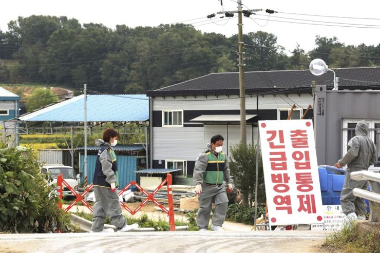 Quarantine officials stand guard as a precaution against African swine fever near a pig farm in Paju, Gyeonggi Province, Friday, Sept. 20, 2019. AP