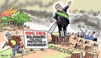 Bolsonaro and Amazon