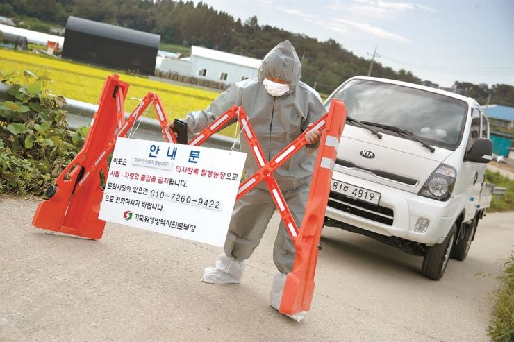 A quarantine officer places a temporary fence to prevent access to a pig farm in Paju, Gyeonggi Province, where the nation's first case of African swine fever was confirmed Tuesday. The government culled about 4,000 pigs there and ordered a 48-hour movement ban at all pig farms nationwide to prevent the deadly disease from spreading. / Korea Times photo by Choi Won-suk