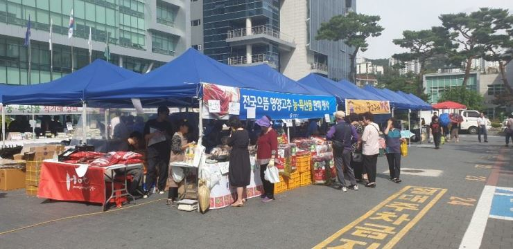 Residents shop for Chuseok groceries at an open-air market in front of Eunpyeong-gu Office, Seoul, Tuesday. / Courtesy of Eunpyeong-gu Office