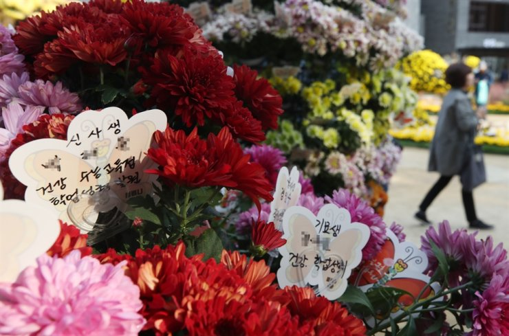 Good luck messages are left among chrysanthemums at Jogye Temple in downtown Seoul, Sunday, wishing for good results in the nationwide university entrance exams that will be held in less than three weeks on Nov. 14. / Yonhap