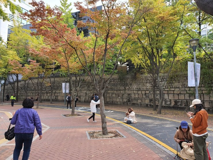 Foreign tourists take photos under a canopy of color-changing leaves along Deoksugung Stonewall Walkway on Oct 28. / Korea Times photo by Jon Dunbar