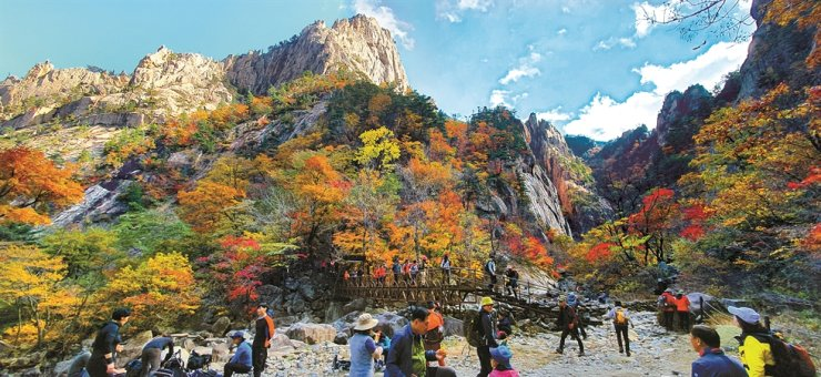 Scores of hikers gather at Seoraksan National Park in Gangwon Province, Sunday, to enjoy the mountain covered in fall colors. The Korea National Park Service says the fall foliage at Mount Seorak hit its peak over the weekend. / Yonhap