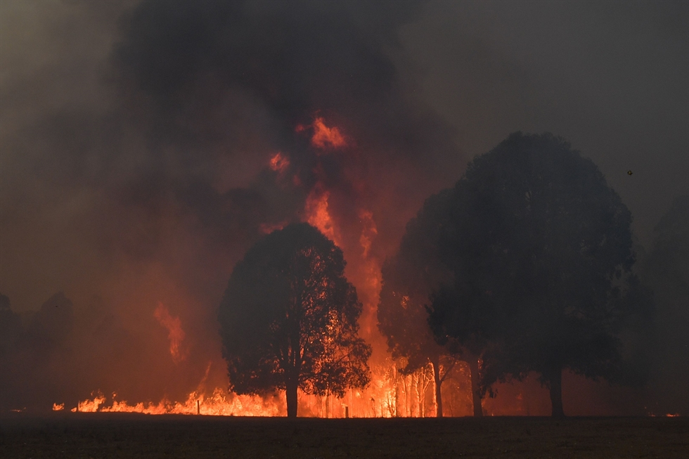 Firefighters hosing down trees as they battle against bushfires around the town of Nowra in the Australian state of New South Wales on Dec. 31, 2019. Thousands of holidaymakers and locals were forced to flee to beaches in fire-ravaged southeast Australia on Dec. 31, as blazes ripped through popular tourist areas leaving no escape by land. AFP