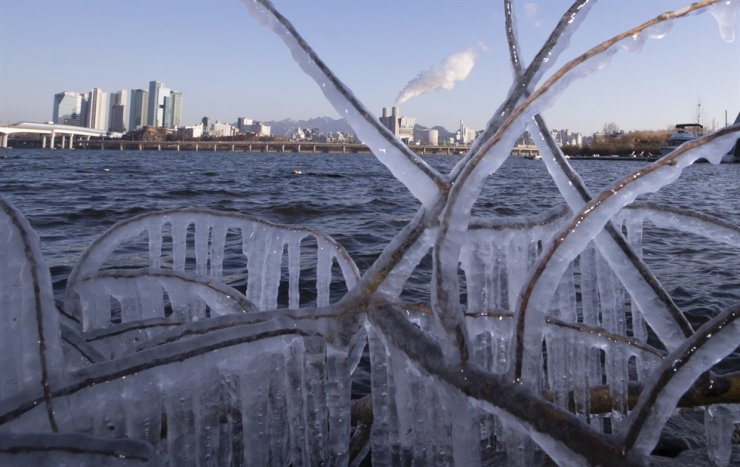 Icicles dangle from tree branches along the bank of the Han River in Seoul, Friday. Yonhap