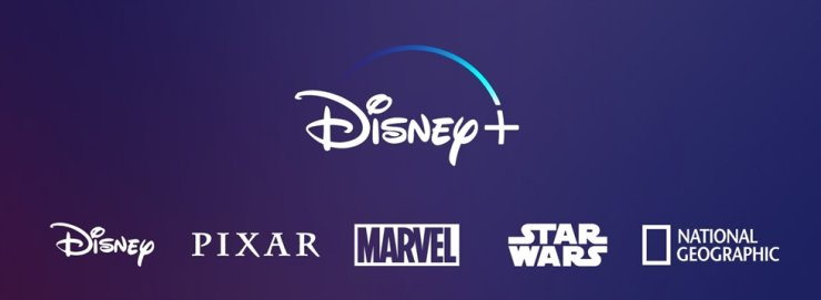 Disney Plus, the entertainment giant's online streaming service, is expected to be launched in Korea next year at the earliest. / Captured from Disney Plus' website