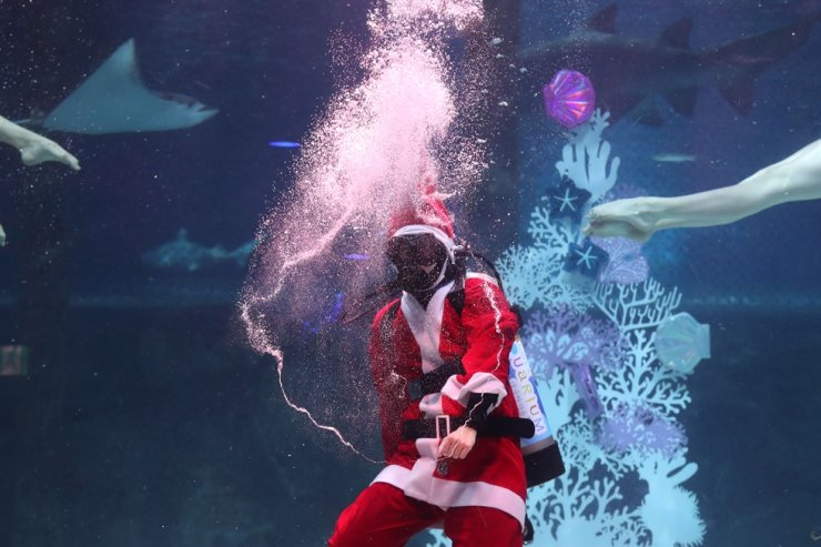 A diver wearing a Santa Claus costume gives a performance at the COEX Aquarium in Seoul, Wednesday. Korea Times photo by Choi Won-suk