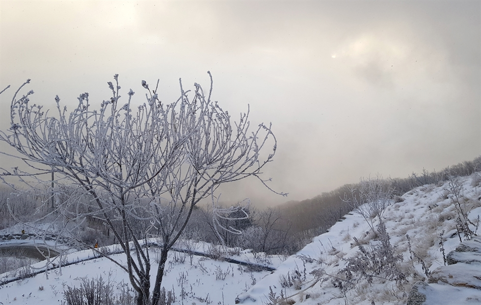 Snow covers Mt. Gwangdeok in Hwacheon, Gangwon Province, Jan. 1, 2020. Yonhap