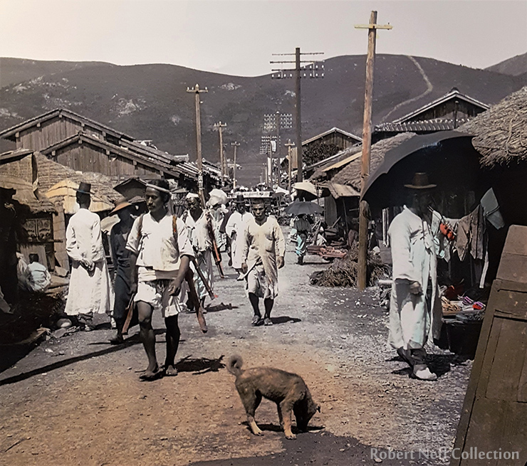 Dogs at the American gold mining concession in northern Korea, circa 1901-1905.  Robert Neff Collection