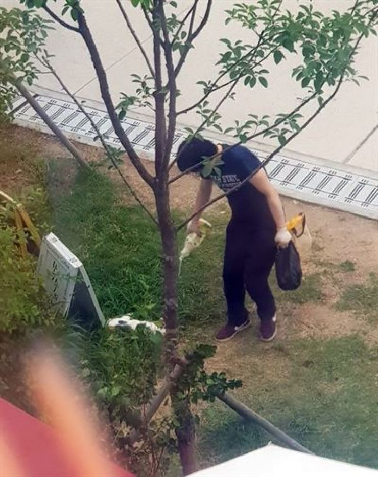 Jeong harms a cat near a cafe in Seoul on July 13, 2019. Yonhap