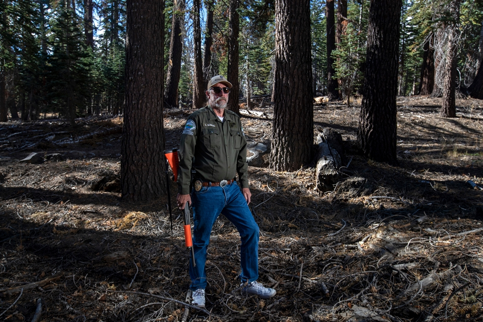 'It's hard to know if the bears are his spirit animal, or it's the other way around,' a UC Santa Barbara expert says of Searles. Tribune News Service