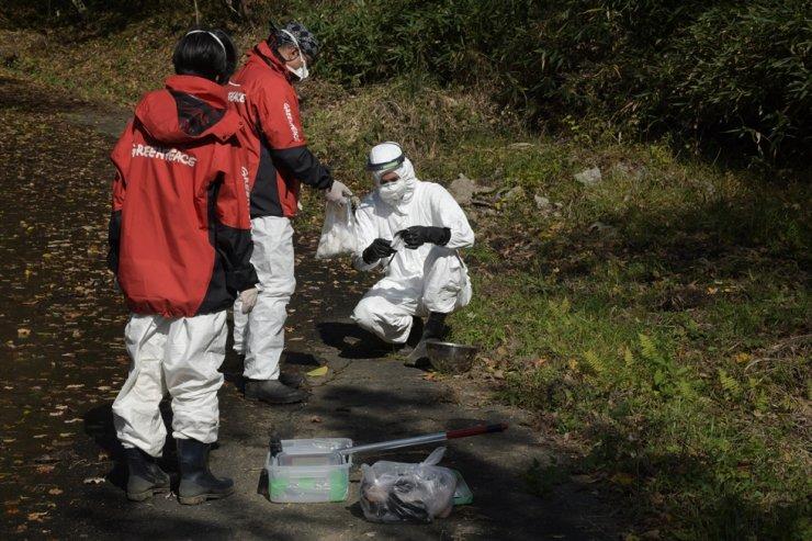 Greenpeace radiation survey team investigates radiation levels in Tsushima, Namie exclusion zone, Fukushima Prefecture, Japan, Nov.1, 2019. /Courtesy of Greenpeace