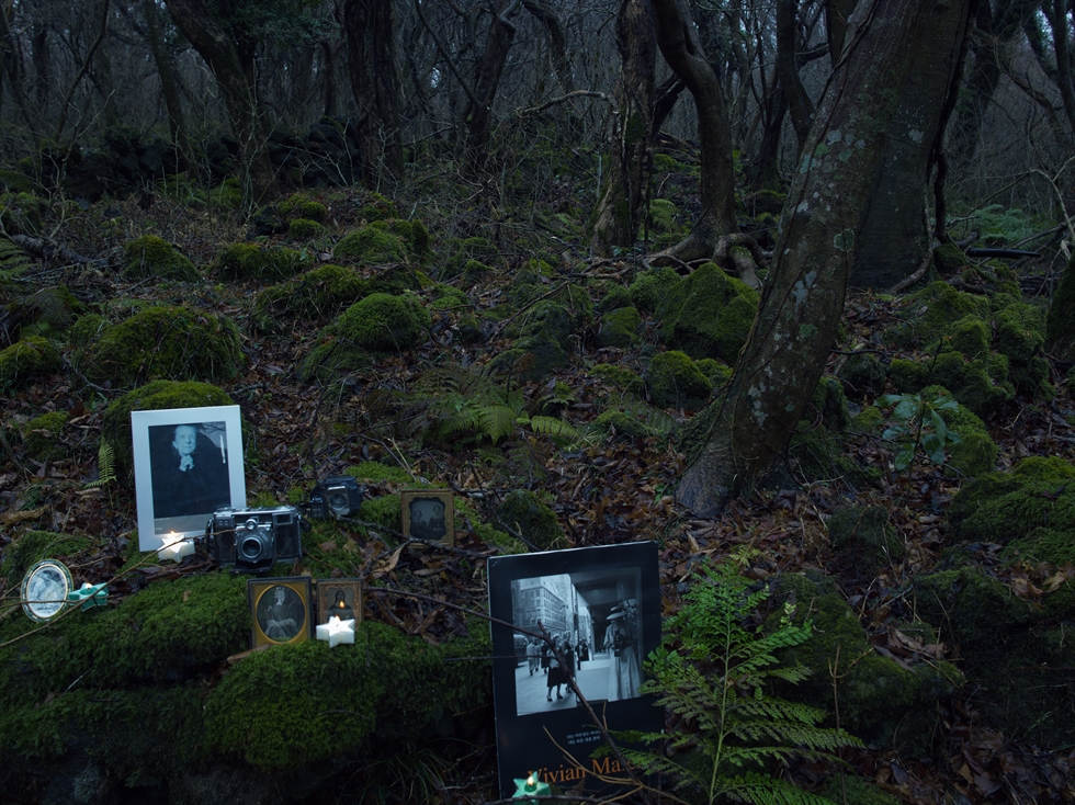 Park Young-sook's 'Tears of a Shadow 7' is part of the photographer's latest series taken in Gotjawal Forest on Jeju Island. Courtesy of the artist and Arario Gallery