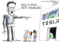 Musk is weird