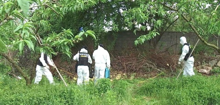 Police investigate a fruit farm at Jeonju in North Jeolla Province, May 12, after a woman's body was found there. Yonhap