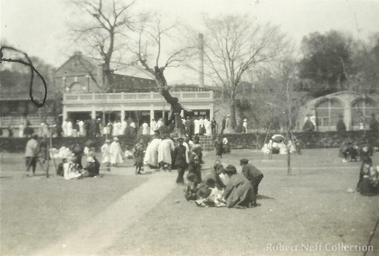 Hippos at Changgyeong zoo, circa 1930s. Robert Neff Collection