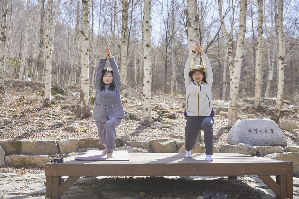 People lean back against trees and have a moment of meditation at the Jangseong Soopchewon in South Jeolla Province. / Courtesy of Korea Tourism Organization