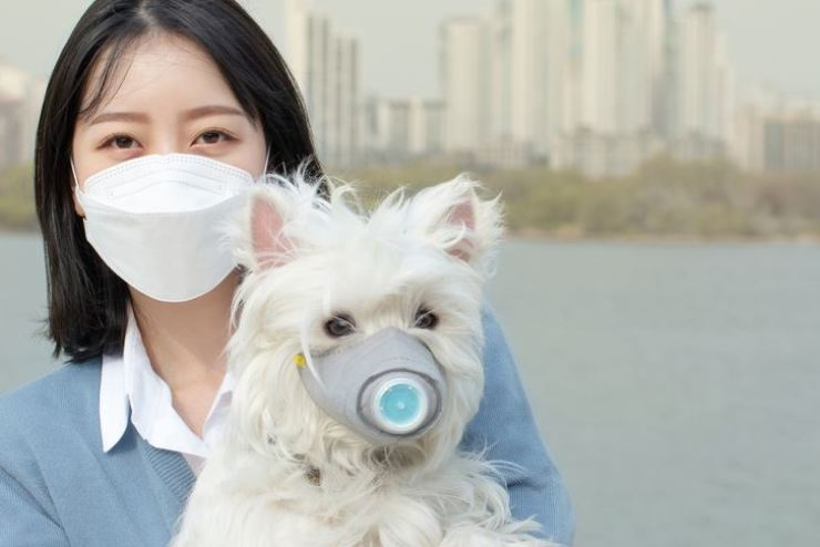 Reduction of particulate matters in air should be the top priority of the Korean government's environmental policies, according to the respondents of a poll conducted by Ministry of Environment last year. GETTYIMAGESBANK